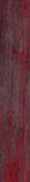 TL15MC01 MONTECARLO Rosso 15x90