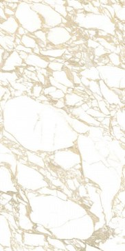 4100704 Pulp D. Polished Gold 60x120