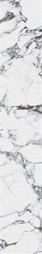 4100740 Pulp Raw Black 10x60