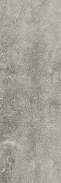 X3010372X6 Silver Mons nat. 100x300