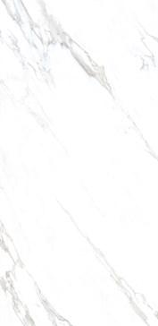 083006 Calacatta Naturale Rett. 160x320