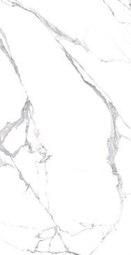 087028 Statuario Splendente Rett. 120x240