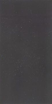 Primavera Nero 120x240