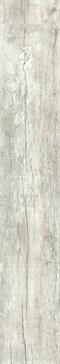 NIRVANA 2012W 20x120