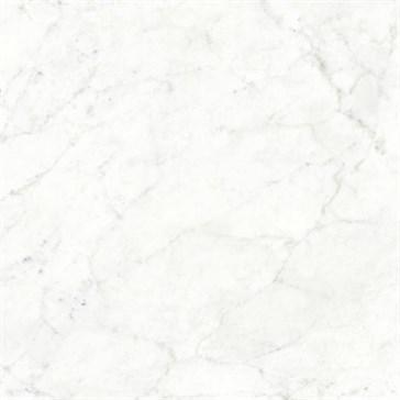 Michelangelo Altissimo 150x150 LS