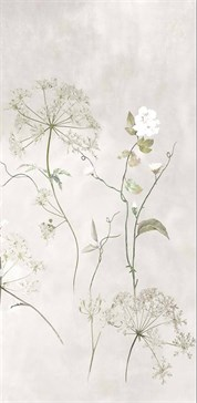 Maiora Botanical White Faccia C RT 120x240