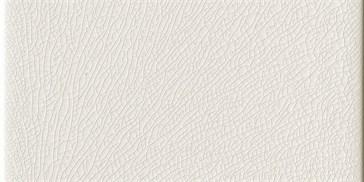 Bianco Playa 10x20