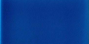 Rettangolo Blu Oltremare 5x10