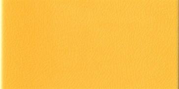 Rettangolo Giallo Pantogia 5x10