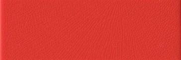 Rosso Vivo 10x30