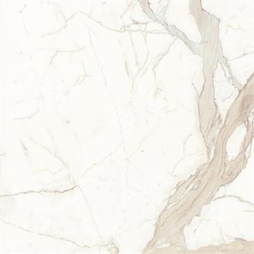 Bianco Calacatta 120x120 SO