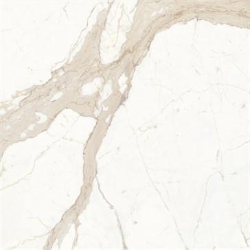 Bianco Calacatta 120x120 LS