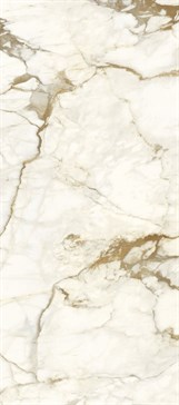 Calacatta Macchia Vecchia 120x270 SO