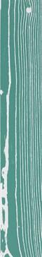 The White Positive Verde 3 120x20 rett.