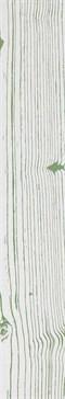 The White Negative Verde 2 120x20 rett.
