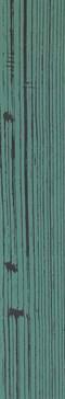 The Black Positive Verde 3 120x20 rett.