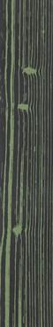 The Black Negative Verde 2 120x20 rett.