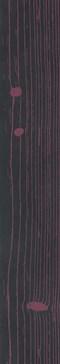 The Black Negative Viola 2 120x20 rett.