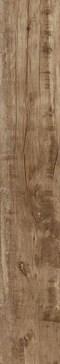 Woodmania Caramel 20x120