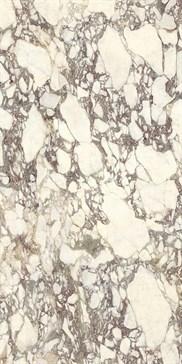 UM6S300671 Calacatta Viola 150x300 SO